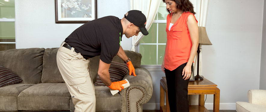 Clovis, CA carpet upholstery cleaning